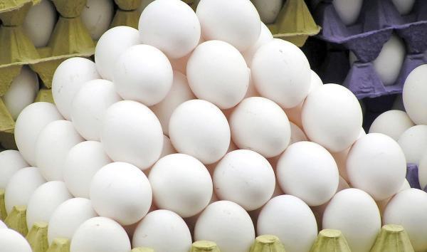 عرضه روزانه 300 تن تخم مرغ در بار انداز تهران